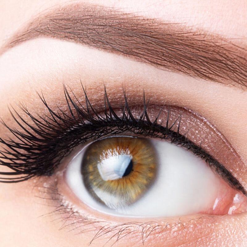 Eyelash+&+Eyebrow+Tinting