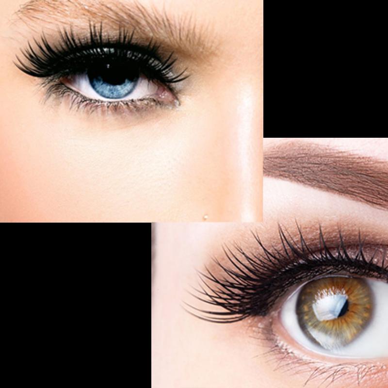eyebrow-eyelash